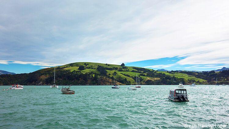 New-Zealand_Banks-peninsula18
