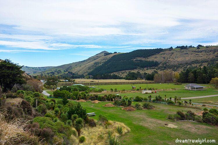 New-Zealand_Banks-peninsula23