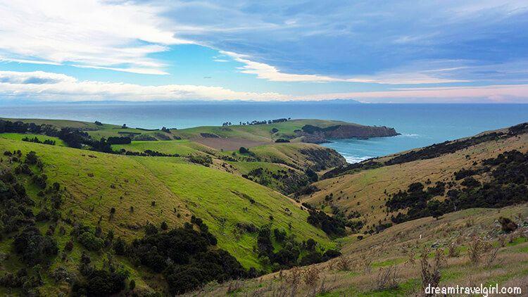 New-Zealand_Banks-peninsula25