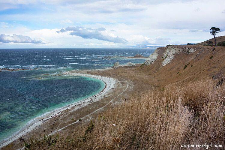 New-Zealand_Kaikoura_views-from-peninsula02