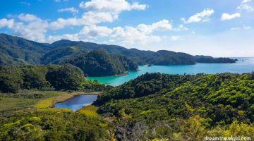 A beautiful, pleasant walk in Abel Tasman National Park