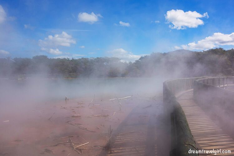 New-Zealand_Rotorua_Kuirau-park02_steam