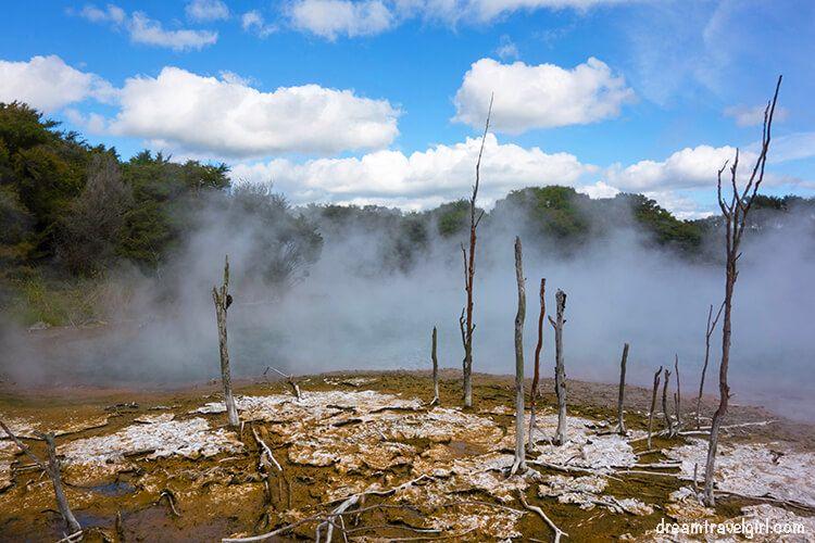 New-Zealand_Rotorua_Kuirau-park03_ochre-soil