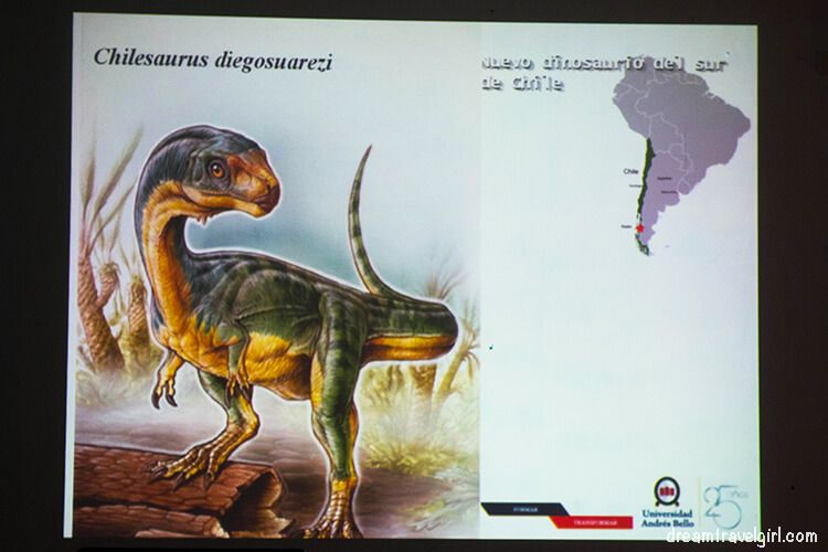 Chilesaurus Diegosuarezi, the new dinosaur from the South of Chile