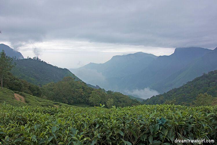 India_Munnar10_plantations_clouds
