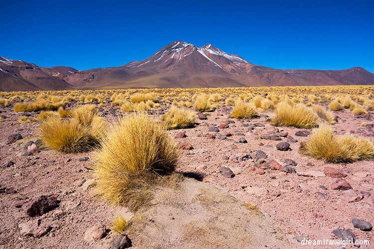 Red mountain, yellow grass