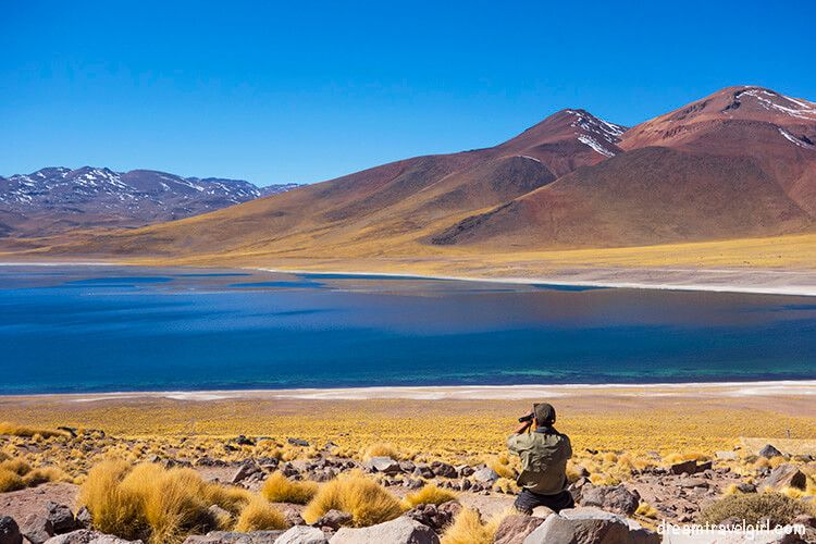 Chile_San-Pedro-Atacama_lagunas-altiplanicas03