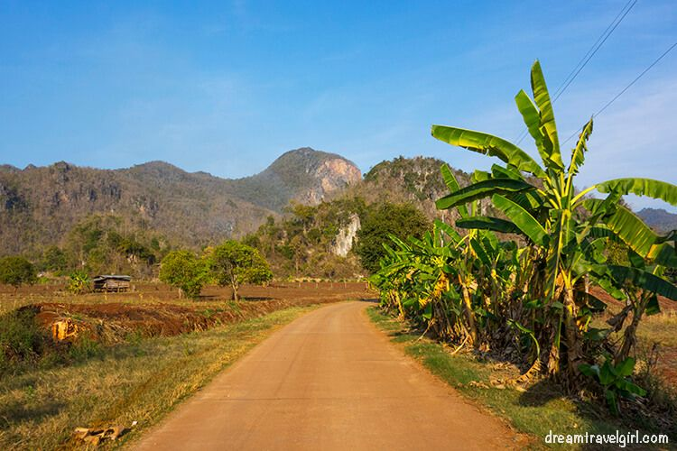 Road, mountains and banana trees