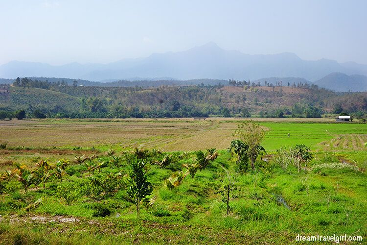 Fields and mountains in northern Thailand