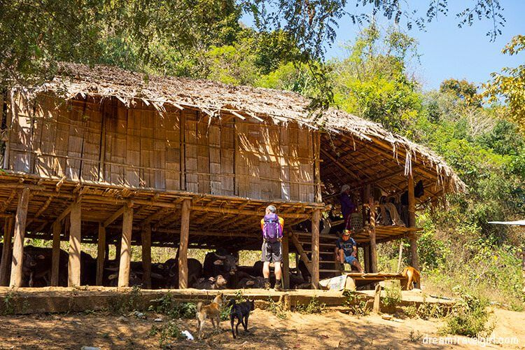 The village where we had lunch during the jungle trekking