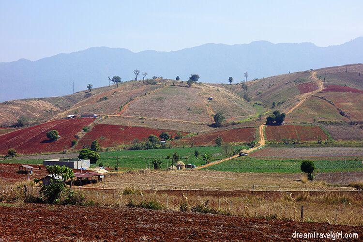 Mae Sariang to Doi Inthanon: colorful views