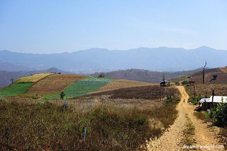 Mae Sariang to Doi Inthanon: dirt road