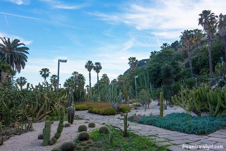 Cacti garden in Montjuic