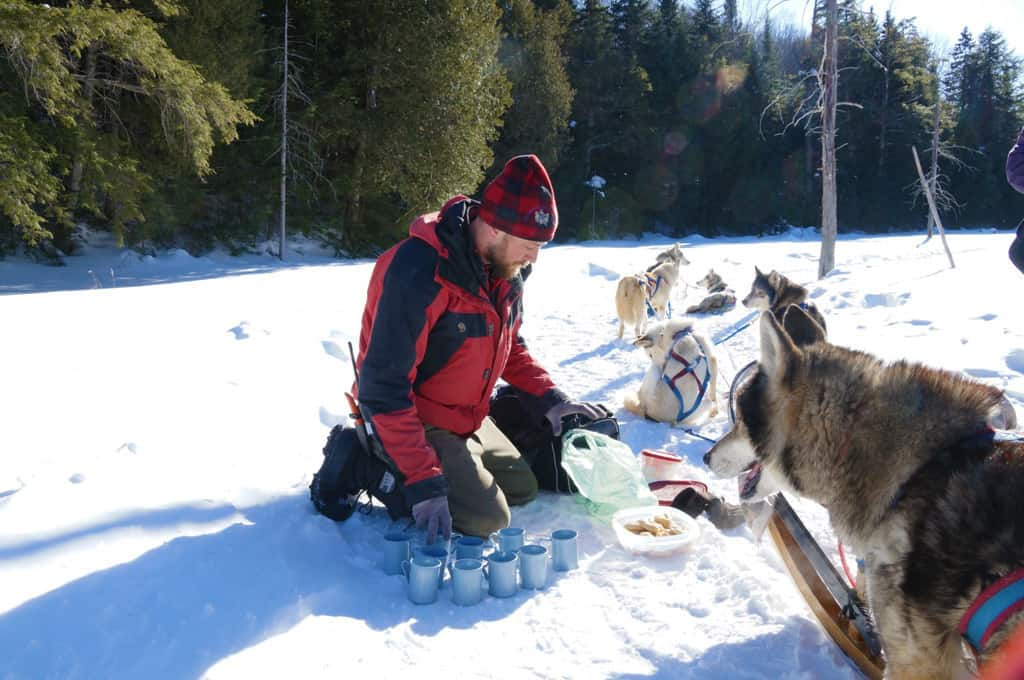 Winterdance-dog-sled-tour-break for hot chocolate and treats