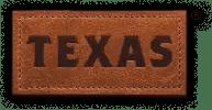 Texas_logo
