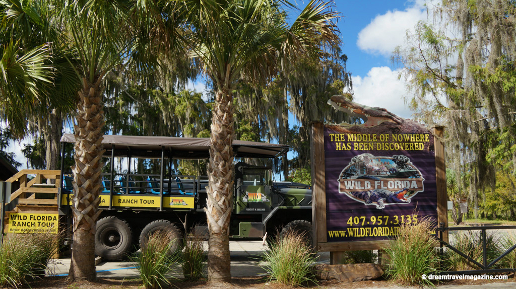 Airboat rides kissimmee fl : Battery operated white led lights