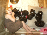 5 week old puppies in their puppy box..