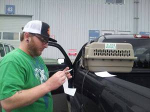 My husband preparing the dog crate for shipping