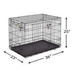 Midwest icrate 36 inch for Standard Labradoodle and Aussiedoodle Adult