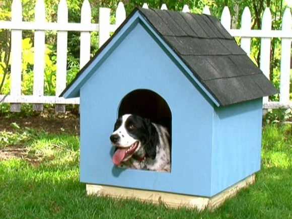 How to Build a Simple A-Frame Doghouse