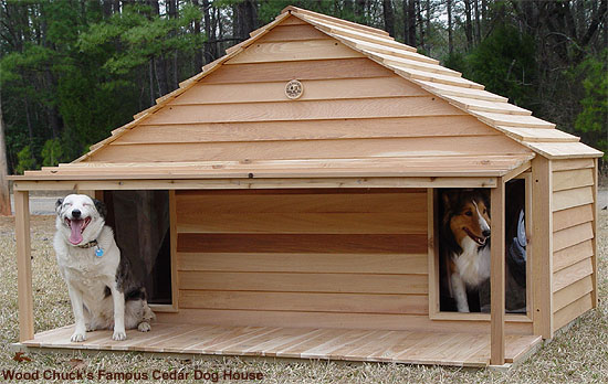 large-duplex-dog-house-3