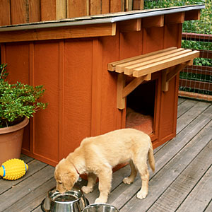 Build a mini ranch house for your pooch