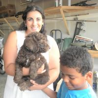 "Multigen Labradoodle Puppy ""Rio"" and his new family.."