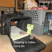 A carry on soft sided dog crate for small puppies and a standard size puppy crate for shipping