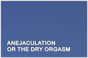 Anejaculation or the Dry Orgasm