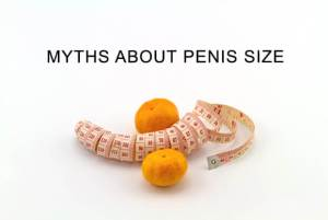 Myths About Penis Size image