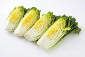 白菜四つ割り