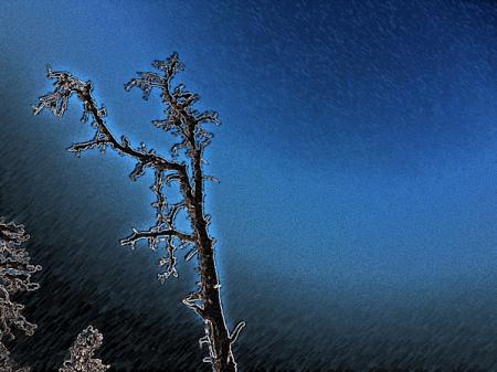 treeofdarkness.png