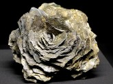 Rose aus Gestein