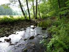 Bauchlauf und Ufer