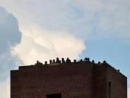 Tag der Sachsen 2014 Besucher auf Turm