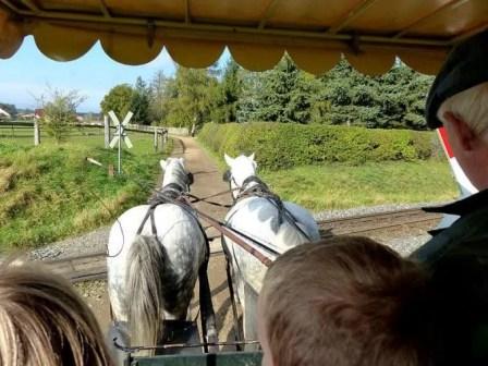 Mit der Kutsche zum Fisch- und Waldfest Moritzburg