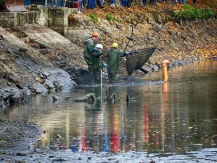 Abfischen Fischer mit Netz