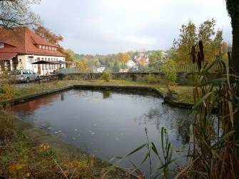 Teich Burg Hohnstein