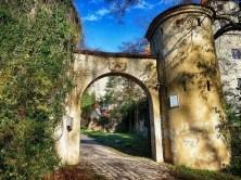 Torbogen Eingang Rankpflanzen Steinmauer