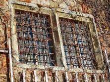 Vergitterte Fenster mit Weinranken Steinmauer