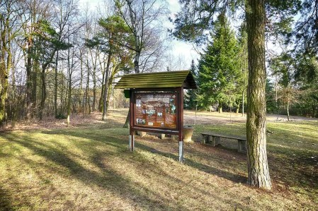 Bildtafel Wald Bank