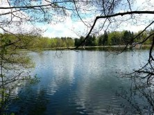 See Ufer Wald