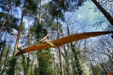 Flugsaurier greift Besucher an :-)