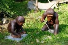 2 Affen Urmenschen machen Feuer