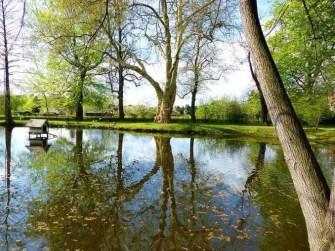 Teich Ufer Bäume Entenhaus Schloss Pillnitz