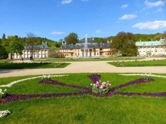 Blumenbeet und Palais Schloss Pillnitz