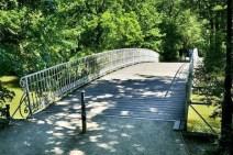 Brücke am Carolasee