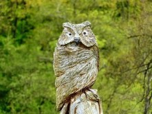 Holzschnitzerei Eule
