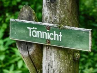 Mittelpunkt-Mitte-Sachsen-Bild-015