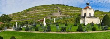 Schloss-Wackerbarth-Weingut-Bild-098